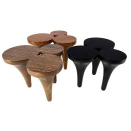 TRIFOLD DESIGN REMAINS CENTER TABLE