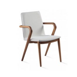 TRIFOLD DESIGN FIND DINING CHAIR