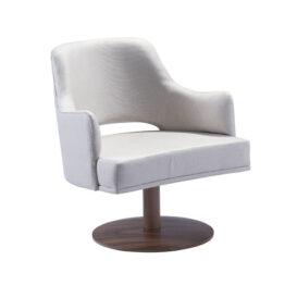 Furniture - Armrest